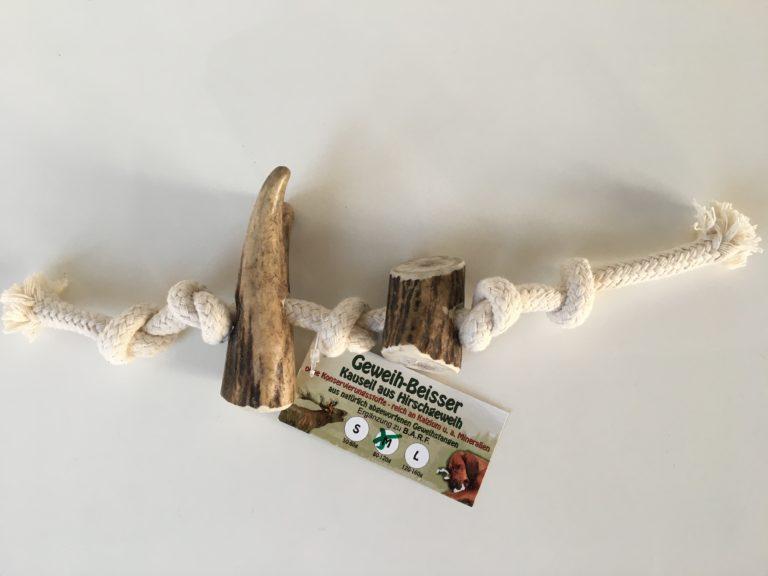 Zwei Abwurfstangen vom Rothirsch zum Kauen für Hunde in Größe M. Stücke sind an ein Seil geknotet.