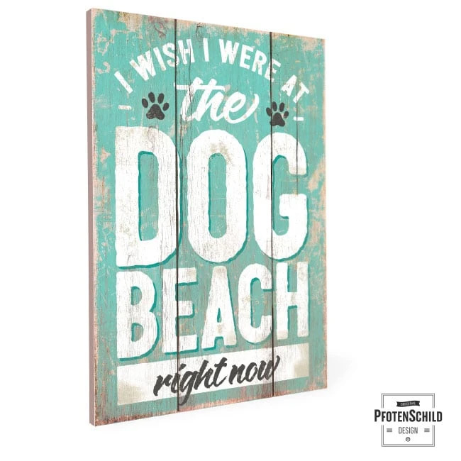 I wish I were at the dog beach right now