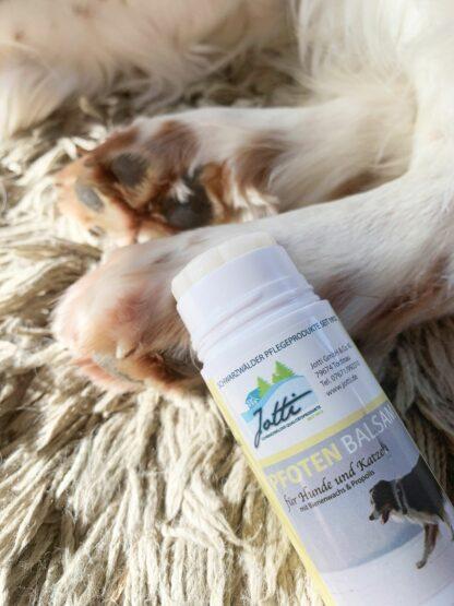 Pfotenbalsam als Pflegestift für Hunde und Katzen