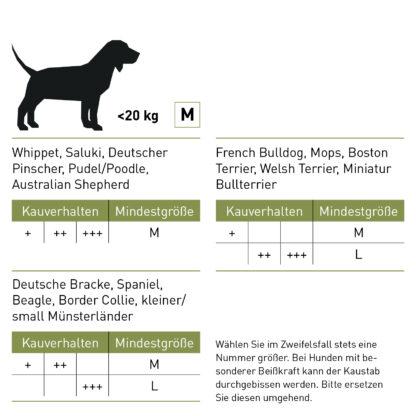 Grössentabelle Kaustab für Hunde aus Olivenholz